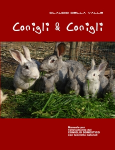 fronte-conigli2